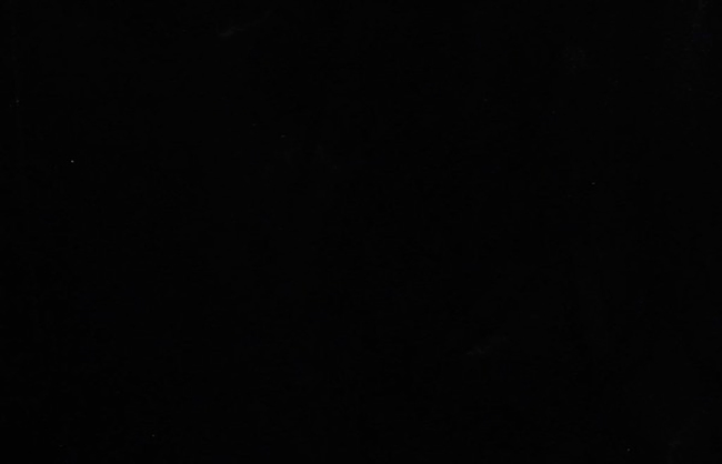 Granito Preto Absoluto